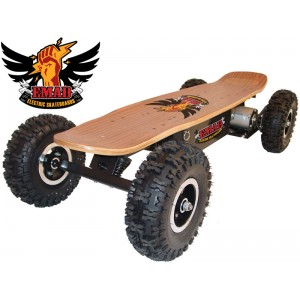 Emad 800w Ride on Electric Skateboard